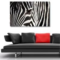 Tictac Zebra Kanvas Tablo - 60X120 Cm