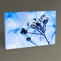 Tablo 360 Çiçek Tomurcukları 45X30
