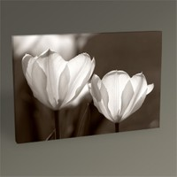 Tablo 360 Tulips Tablo 45X30