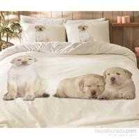 Taç Tek Kişilik Nevresim Takımı - Dogs Pembe