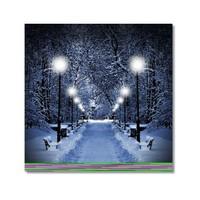 Tictac Karlı Yol Kanvas Tablo - 50X50 Cm
