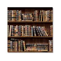 Tictac Kitaplık Kanvas Tablo - 70X70 Cm