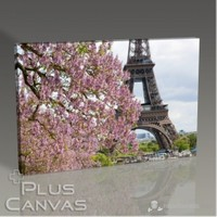 Pluscanvas - Paris - Eiffel Behind A Tree Tablo