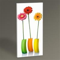 Tablo 360 Vazoda Renkli Çiçekler Tablo 60X30