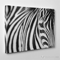 Tabloshop - Zebra Canvas Tablo - 75X50cm