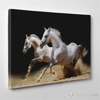 Tabloshop - Horses Canvas Tablo - 75X50cm