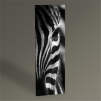 Tablo 360 Zebra Tablo 60X20