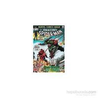 Maxi Poster Marvel Retro Spiderman Vs Green Gob