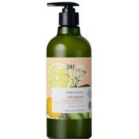 Ausganica Litsea Cubeba Volumizing Shampoo