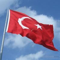 Gönder Bayrak - Türk Bayrağı 30X45 Cm