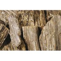 Plantistanbul Wooden Rock Doğal Dekoratif Taş 5-10 Cm, 25 Kg