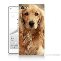 Teknomeg Sony Xperia Z5 Premium Köpek Baskılı Silikon Kılıf