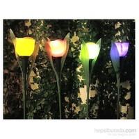 Hepsi Dahice Lale Tasarım Güneş Enerjili Gece Lambası kk