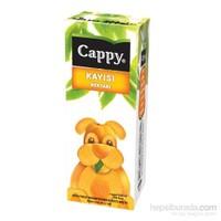 Cappy Meyve Suyu Kayısı 200 Ml