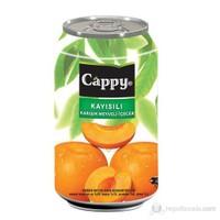 Cappy Kayısı Kutu 12x330 Ml