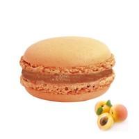 Nefis Gurme Kayısılı Deluxe Parisian Macaron 12'Li