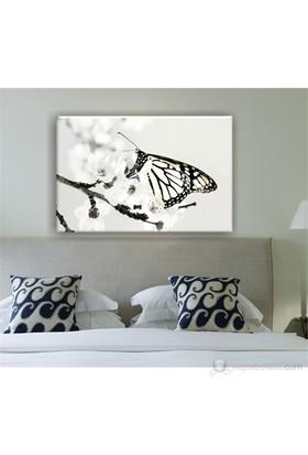 Siyah Beyaz Kelebek Dekoratif Kanvas Tablo