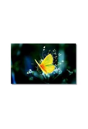 Tictac Sarı Kelebek 3 Kanvas Tablo - 40X60 Cm