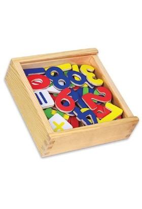Vıga Toys Manyetik Rakamlar - 37 Parça