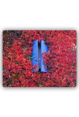 Montaine Dekoratif Mdf Tablo 30X40 Cm Mt247-1