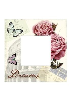 Kanvas Ayna Dreams
