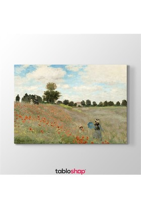 Tabloshop Claude Monet - Poppy Field Tablosu