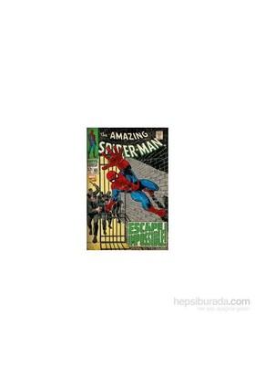 Maxi Poster Marvel Spiderman- Escape Impossible