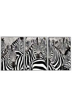 Tictac 3 Parça Kanvas Tablo - Zebra