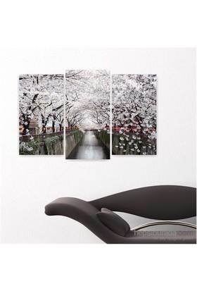 Dekoriza Beyaz Çiçekli Ağaç Dalları Kanvas Tablo 3 Parçalı Kanvas Tablo 80X50cm