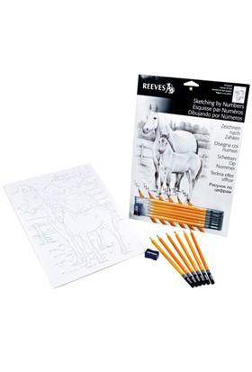 Reeves Dereceli Kalemler İle Gölgelendirme Çizim Seti At Ve Tay