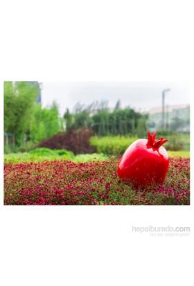 GardenLife Dekoratif Bahçe Süsü - Nar Obje