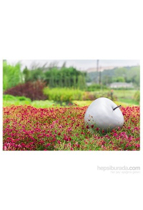 GardenLife Dekoratif Bahçe Süsü - Elma Obje Gümüş