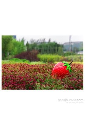 GardenLife Dekoratif Bahçe Süsü - Çilek Obje