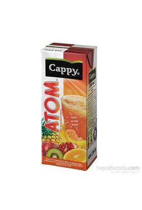 Cappy Atom Meyve Suyu 200 Ml