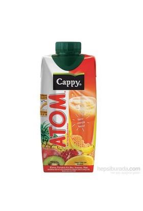 Cappy Atom 100 Meyve Suyu 330 Ml