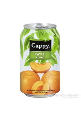 Cappy Kayısı 330 ml 12'li kk
