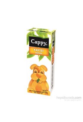 Cappy Kayısı 200 ml 27'li kk