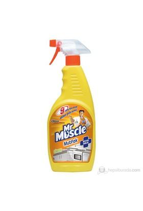 Mr Muscle Mutfak Temizleyici 750 ml - Citrus kk