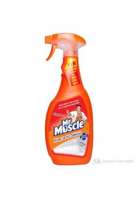 Mr Muscle Kir- Kireç Sökücü 750 ml