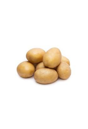 Dalından Koptu Patates (Kg)