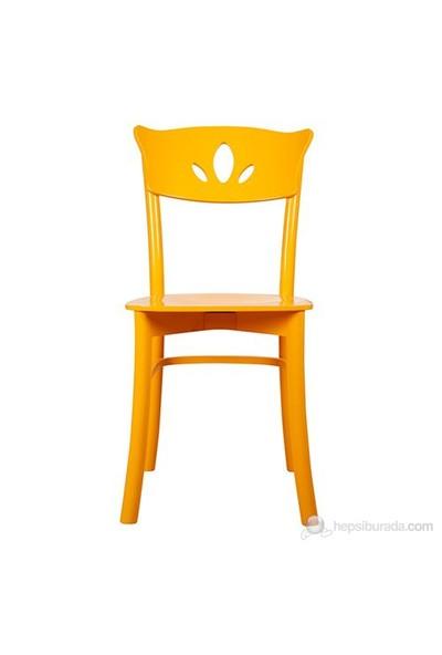 3A Mobilya Counter Sarı Sandalye