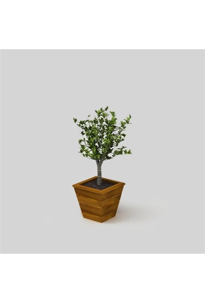 Onlywood Flower Vela Saksı Eskitme