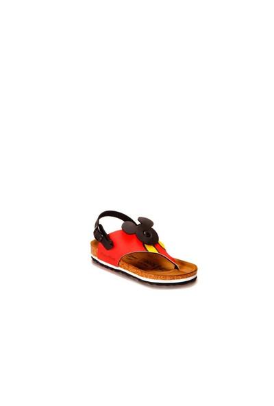 Birkenstock Sumatru Mickey Çocuk Sandalet 103293.Mıc