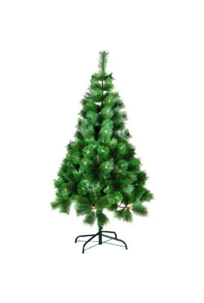 150 Cm Yeşil İğne Yapraklı Çam Ağacı