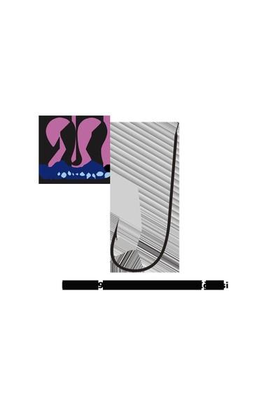 Maruto Japon Olta İğnesi 9491 Marukaizu Çapraz Ns 17