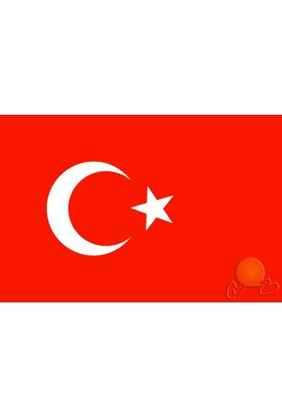 Vatan Türk Bayrağı 40 x 60 cm