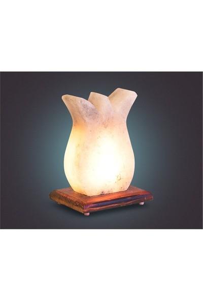 Lale Tuz Lambası 2-3 Kg