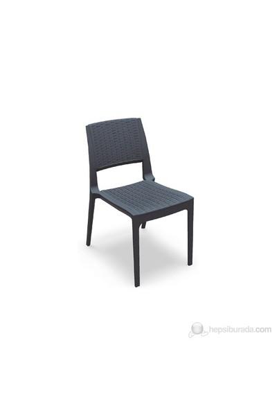 Siesta 830 Verona Kolsuz Sandalye Koyu Gri - 1 Adet