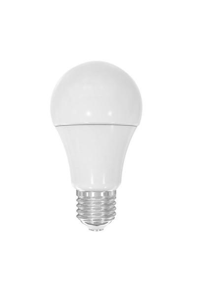 Lamptime 9w e-27 Duy 3000k Gunışığı Işık Led Ampul 301309