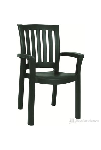 Siesta 015 Malibu Profil Ayaklı Yeşil Sandalye